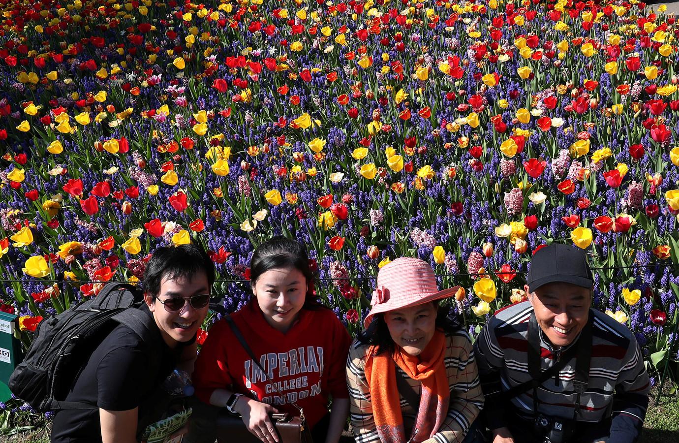 Toeristen poseren voor de tulpen.