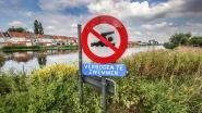 "Recordbrekende hitte op komst, burgemeesters waarschuwen: ""Wie zwemverbod in waterlopen negeert, riskeert 50 euro boete"""