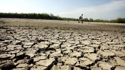 "Klimaatopwarming zal Limburg hardst treffen: ""Hittegolven langer en feller"""