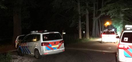 Vier tieners opgepakt voor mishandelen opsporingsambtenaar in Biezenmortel