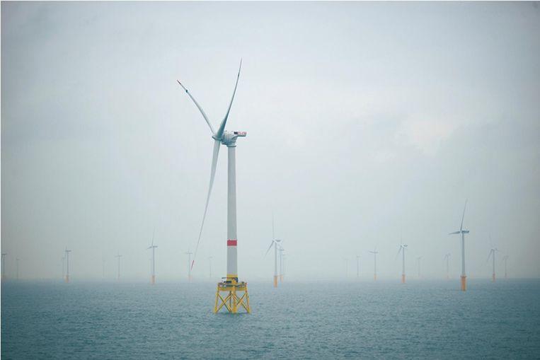 Vanaf september 2019 komen er nog meer windmolens in zee voor de kust van Zeebrugge (foto) maar ook aan Franse zijde willen ze investeren in windenergie en dat baart De Panne zorgen.