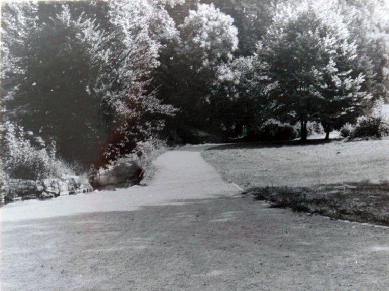 Het park waar het meisje verdween.