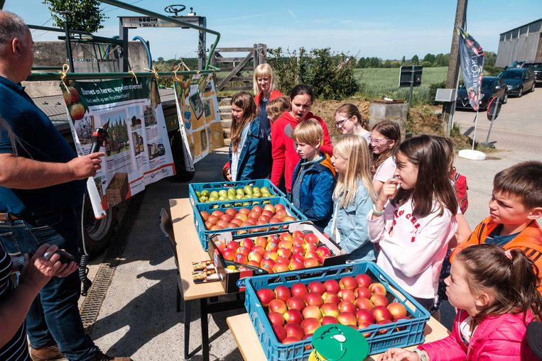 Een fruitteler geeft uitleg over wat hij doet om appelen en peren op de markt te brengen.