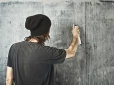 Kernachtig Druten bezorgd over vandalisme