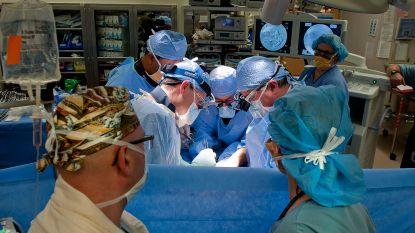 De operatiekamer lijkt op een apenrots: hoe meer mannen, hoe groter de kans op conflicten (met gevaar voor de patiënt)