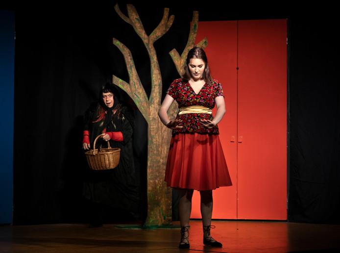 De Deurnese theatergroep Wizzel speelt Doornroosje.