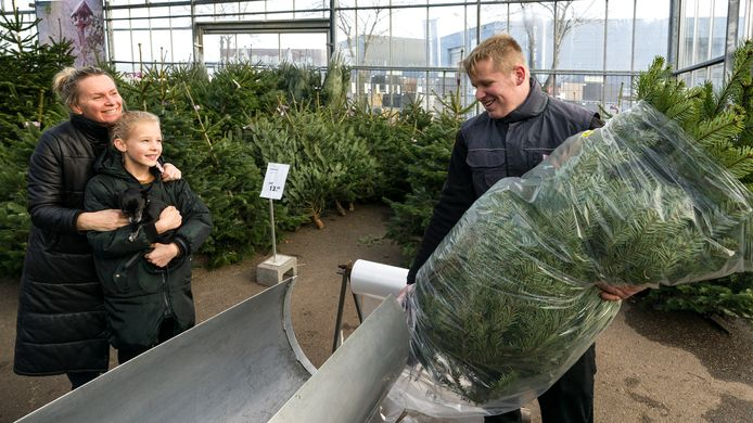 Petri (l) en Bibi Sterrenburg hebben bij het Tuincentrum in Boxtel een Nordmann uitgezocht.