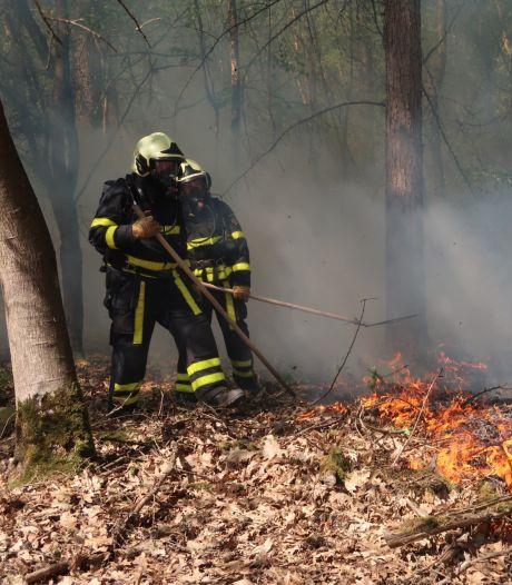 Natuurbrandje in De Mortel laait voor de derde keer op