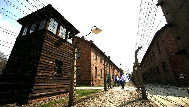 Mensen lopen tijdens 'de mars van de levenden', april 2015, van Auschwitz I naar Auschwitz II-Birkenau. Beeld epa