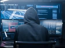 Borne leert van cyberhack Hof van Twente en controleert eigen it-systeem dagelijks