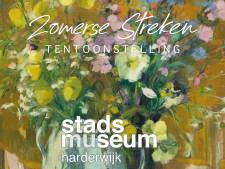 Stadsmuseum Harderwijk opent de deur voor zorgmedewerkers