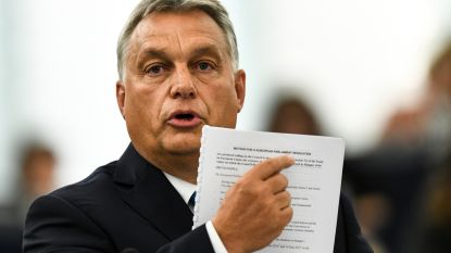 """""""Ideologische kieskeurigheid is in Europa niet aan de orde"""""""