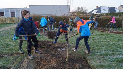 Kinderen planten bomen op speelplaats, gewapend met dikke trui tegen vrieskou
