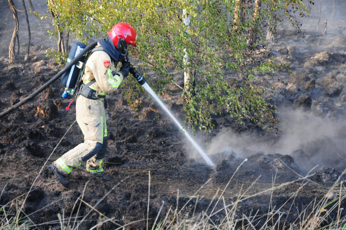 De brandweer blust de bodem na de natuurbrand in Budel.