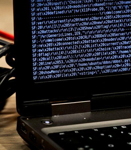 Cybercrimelen krijgen steeds vaker veel geld betaald voor hun diensten