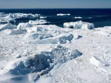 Trump stelt bezoek aan Denemarken uit om Groenland