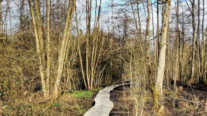 Koersel Kapelleke in trek bij wandelaars