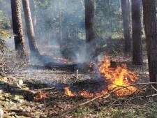 Natuurbrandje in bos bij Dierenpark Amersfoort
