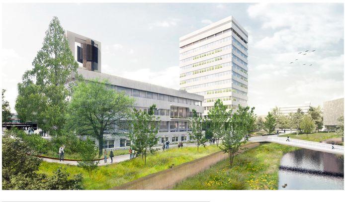 Ook de omgeving van het Stadhuis en de Stadhuistoren worden groener, zoals hier aan de kant van de Dommel.