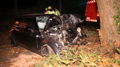 Fikse geldboete voor jonge bestuurder die onder invloed crasht tegen boom