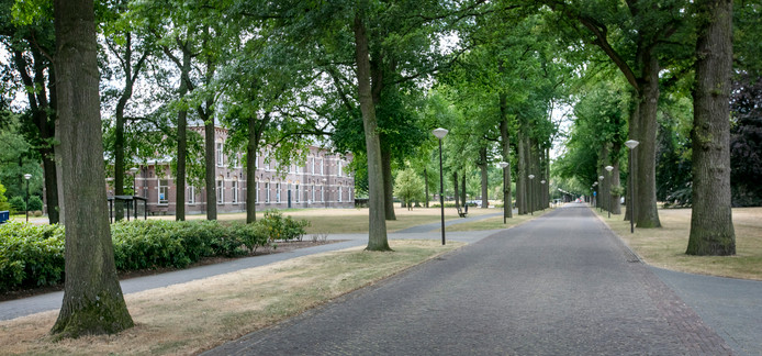 De Laan van Voorburg is nog even statig als in de tijd van Diepen.