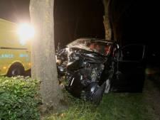Busje eindigt tegen boom in Hedel, bestuurder naar ziekenhuis