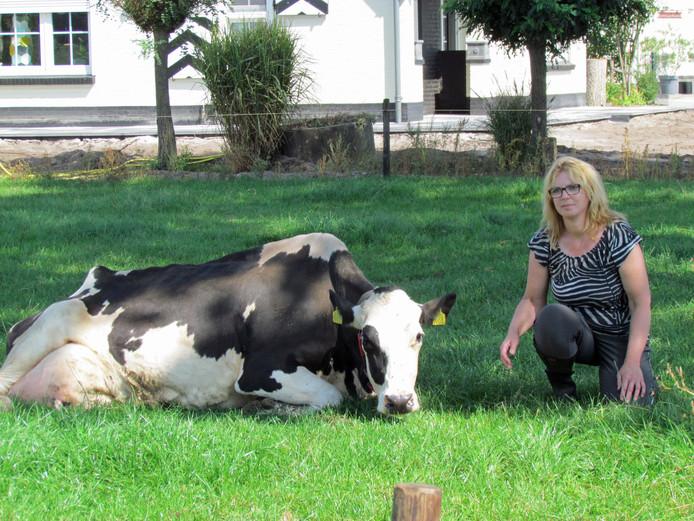 Petra Baltussen met een van haar koeien.