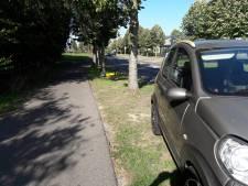 Bestuurder rijdt verkeersborden uit de grond in Groesbeek