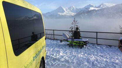Ontroerend beeld toont terminaal zieke jongen die nog één keer Zwitserse bergen bezoekt