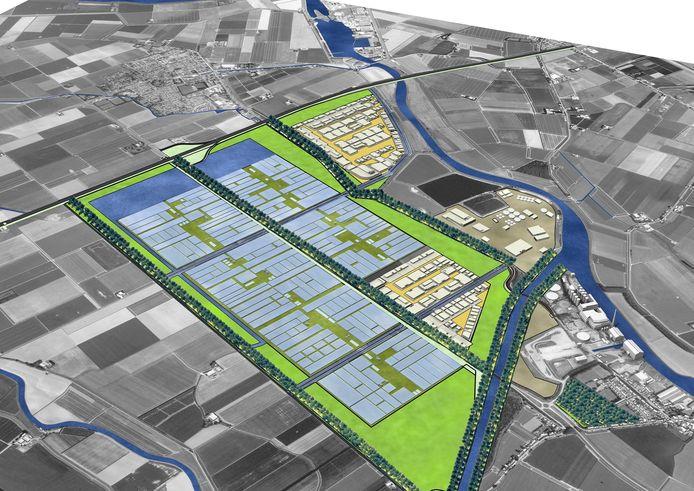In de eerste plannen van de provincie was het kassengebied zelfs al ingetekend ten zuiden van de Noordlangeweg. Later is alleen het rechtse gedeelte met vooraan bedrijven en daarboven kassen ingevuld als Agro Food Cluster Nieuw-Prinsenland.