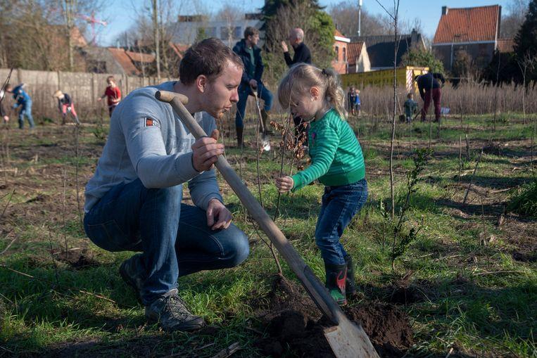 Aanplant nieuwe bomen aan Hutsepotbos in Zwijnaarde.
