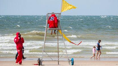 Frisse duik in zee? Enkel strandredders in Blankenberge