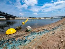 Blauwalg verpest laatste zomerse dag voor recreanten bij Spiegelwaal