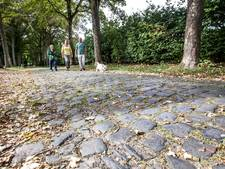 Krakkemikkige Stationsweg op Eeneind in Nuenen te mooi om op te knappen