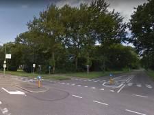 Weteringlaan en Griftlaan in Zeist krijgen nieuwe bomen en struiken
