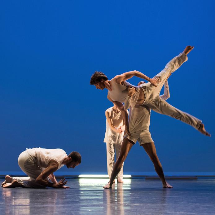 Talent on the Move  brengt de voorstelling Holland Dance Festival in het Ledeltheater.