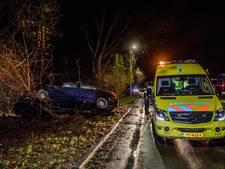 BMW slipt op de Heikantlaan in Tilburg tegen boom aan