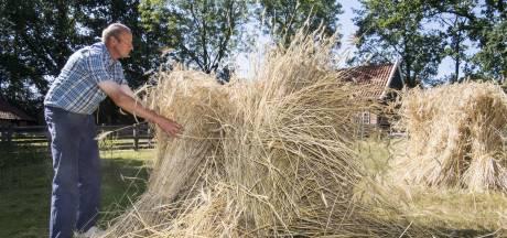 Warm of niet, 'gewoon' oogstdag in Ootmarsum