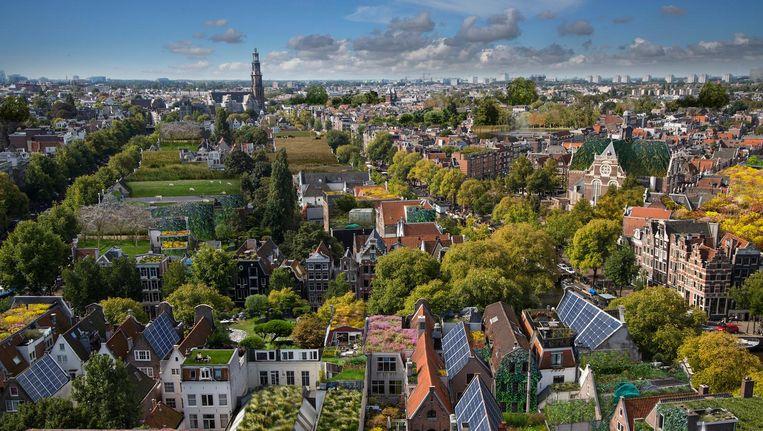 ¿ Rooftop Revolution maakte een artist's impression van hoe groen de stad zou kunnen zijn. Beeld Ai Alice Wielinga/Rooftop Revolution