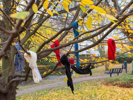 Mysterieuze weldoener hangt winterjassen in bomen voor daklozen