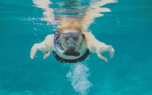 Zille plaatste een foto op Facebook, snorkelend in Thailand. De foto is in werkelijkheid genomen in een zwembad in Amsterdam-Noord