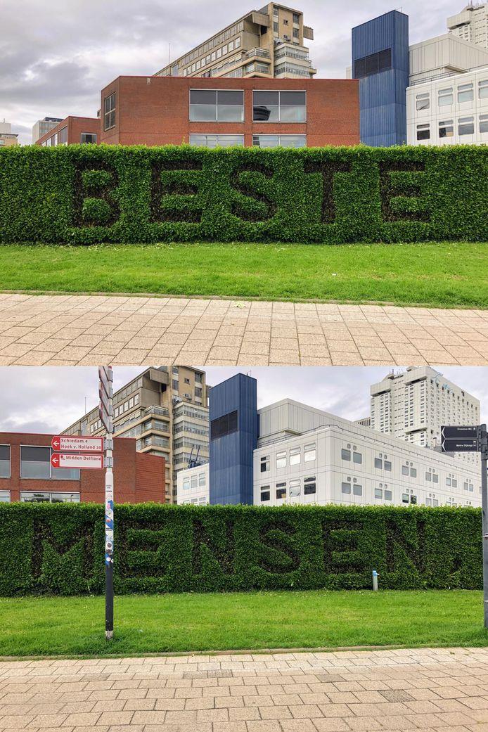 'Beste mensen,'. Die tekst prijkt sinds zondagmiddag levensgroot in de heg bij het Erasmus MC in Rotterdam.
