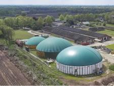 'Varkenshouder Coppens kijkt naar locatie BioSpares Nistelrode'
