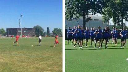Eersteklassers puffen op eerste training, Bölöni legt er meteen de pees op
