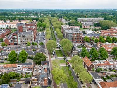 Duurzaam: is Utrecht groen of juist nog lang niet groen genoeg?