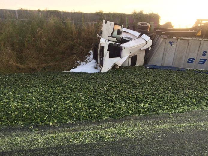 De augurken uit de vrachtwagen kwamen niet alleen in de berm, maar ook op het wegdek van de A58 terecht.