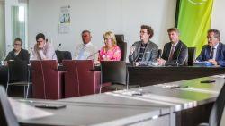 Zes West-Vlaamse burgemeesters verzetten zich tegen komst hoogspanningslijn