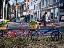 Ondernemers versieren Schiedamse binnenstad met bloemen en planten