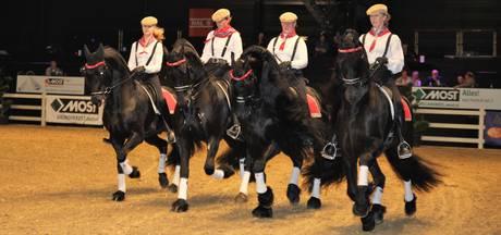 Paardensport van de bovenste plank in Hardenberg