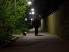 Politie: amper overlast in Babberich